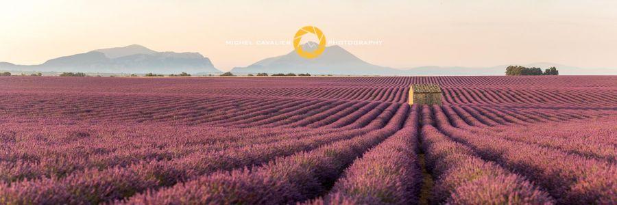 _MG_1812-Panorama