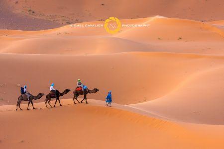 Méharée dans le désert de l'Erg Chebbi Maroc